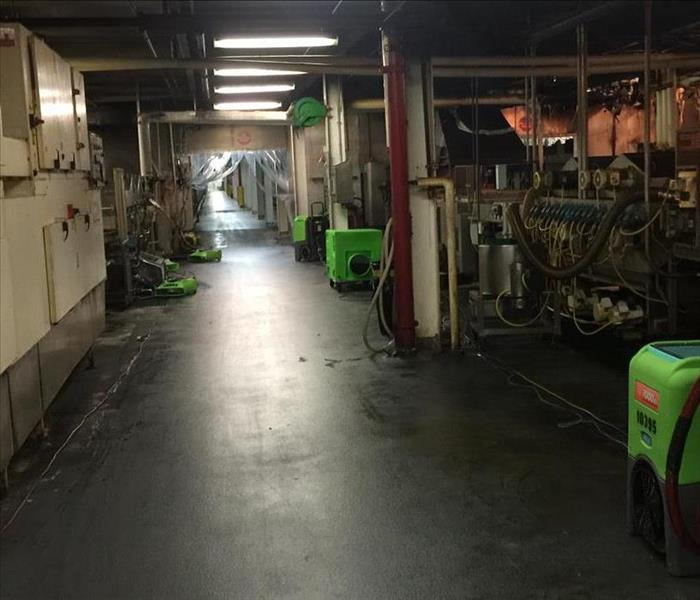 A manufactoring facility hallway with wet ground and green air movers and dehumidifiers lining the way