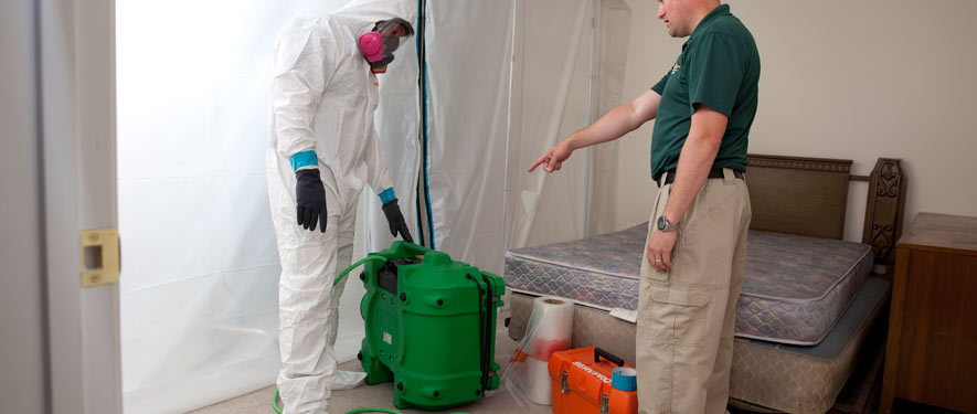 Kansas City, MO mold removal process